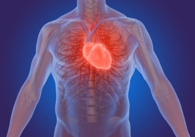 Enfermedad crónica de origen cardiometabólico