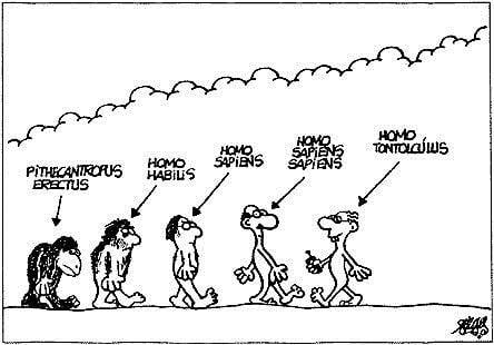 Homo Tontolucus
