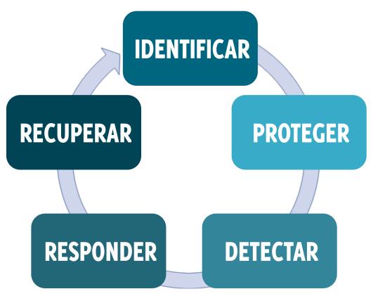ciclo de la seguridad