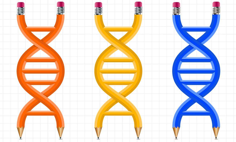 CAD para Genomas